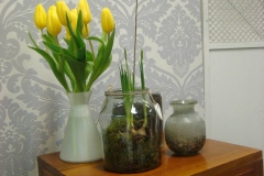 Decoration Sping