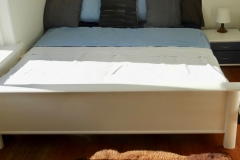 Custom Painted Electric bed made for Bedroom
